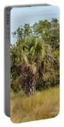 Palm Tree In Golden Grass Portable Battery Charger