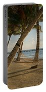 Palm Trees And Hammock On San Pedro Portable Battery Charger