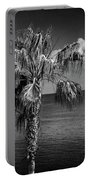 Palm Trees In Black And White At Laguna Beach Portable Battery Charger