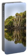 Palm Trees Reflections Portable Battery Charger