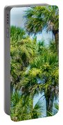Palmetto Palm Trees In Sub Tropical Climate Of Usa Portable Battery Charger