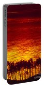 Palms And Reflections Portable Battery Charger