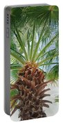 Palmtastic Portable Battery Charger