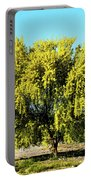 Palo Verde Portable Battery Charger