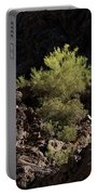 Palo Verde Spotlight-sq Portable Battery Charger
