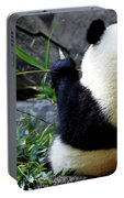Panda Bear Eating Bamboo Portable Battery Charger