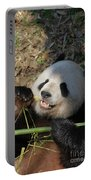 Panda Bear Laying On His Back And Eating Bamboo Portable Battery Charger