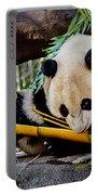 Panda Bear Portable Battery Charger by Robert Bales