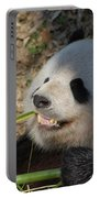 Panda Bear Showing His Teeth As He Munches On Bamboo Portable Battery Charger