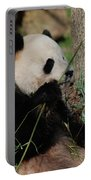 Panda Bear Smelling His Bamboo Before Eating It Portable Battery Charger