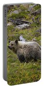 Panda In Many Glacier Portable Battery Charger