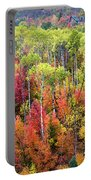 Panoply Of Autumn Color Portable Battery Charger