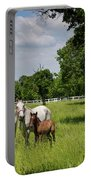 Panorama Of White Lipizzaner Mare Horses With Dark Foals Grazing Portable Battery Charger