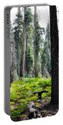 Panoramic Forest Portable Battery Charger