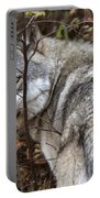 Panoramic Gray Wolf Yukon Portable Battery Charger