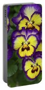 Viola Portable Battery Charger