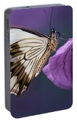 Papilio Dardanus On Violet Flowers Portable Battery Charger