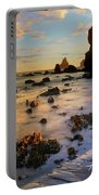 Paradise On Earth Portable Battery Charger