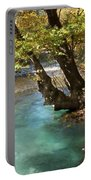 Paradise River Portable Battery Charger