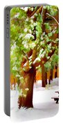 Park In Winter Portable Battery Charger