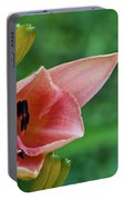 Partially Open Pink Lily Blossom Portable Battery Charger