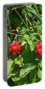 Partridgeberries Portable Battery Charger