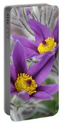 Pasque Flower Friends Portable Battery Charger