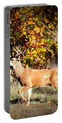 Passing Buck In Autumn Field Portable Battery Charger