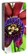 Passion Flower Ver. 5 Portable Battery Charger