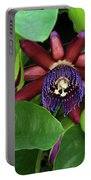 Passion Flower Ver. 8 Portable Battery Charger