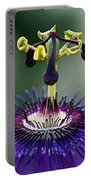 Passion For Purple  Portable Battery Charger