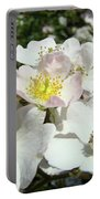 Pastel White Yellow Pink Roses Garden Art Prints Baslee Portable Battery Charger