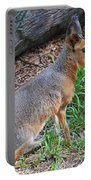 Patagonian Cavy IIi Portable Battery Charger