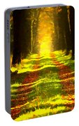 Path In The Forest 715 - Painting Portable Battery Charger