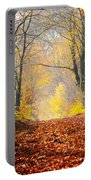 Path Of Red Leaves Towards Light Portable Battery Charger