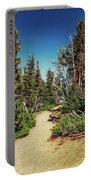 Path On Top Of Mt. Howard, Wallowa Or Portable Battery Charger