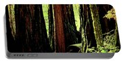 Path Through The Forest Edge . 7d5432 Portable Battery Charger