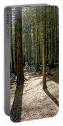 Path Through The Woods. Portable Battery Charger