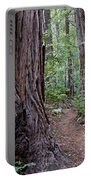 Pathway Through A Redwood Forest On Mt Tamalpais Portable Battery Charger