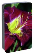 Patricia Neal Daylily Portable Battery Charger