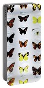Pattern Made Out Of Many Different Butterfly Species Portable Battery Charger