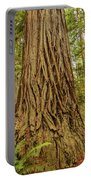 Patterned Redwood Portable Battery Charger