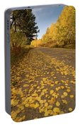 Paved In Gold Portable Battery Charger