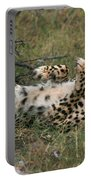 Paws Up Cheetah Portable Battery Charger