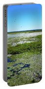 Paynes Prairie View Portable Battery Charger