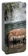 Peace In The Park Portable Battery Charger