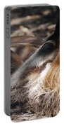 Peaceful Dreams Portable Battery Charger