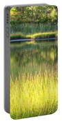 Peaceful Marsh Portable Battery Charger