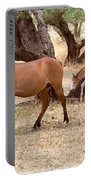 Peacefully Grazing Portable Battery Charger
