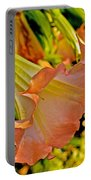 Peach Angel's Trumpet At Pilgrim Place In Claremont-california Portable Battery Charger